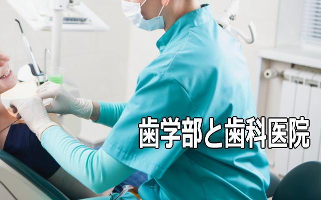 鹿児島大学歯学部と歯科医院
